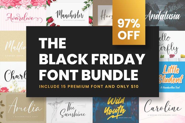 The Black Friday Font Bundle example image 1