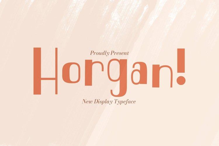 Web Font Horgan example image 1
