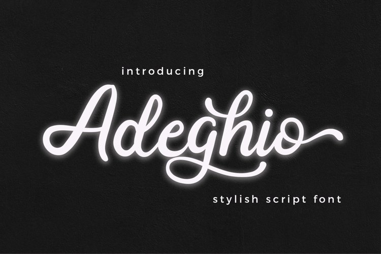 Adeghio Stylish Script Font example image 1