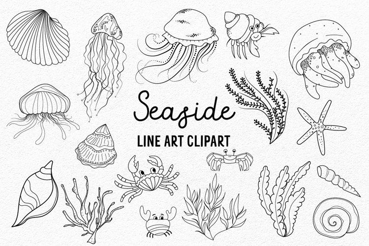JellyFish Clipart |Ocean Clipart | Sea Vector Clipart