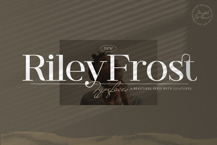 Riley Frost - Casual Serif Font example image 1