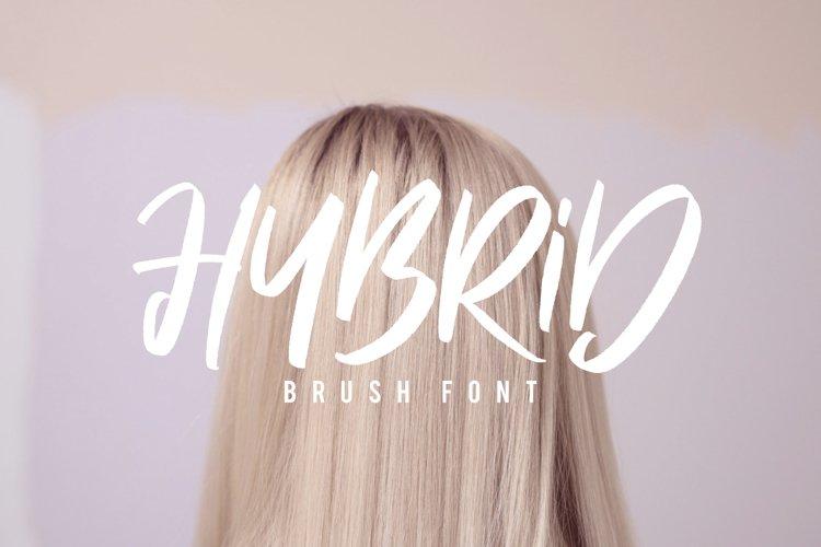 Hybrid Brush Font example image 1
