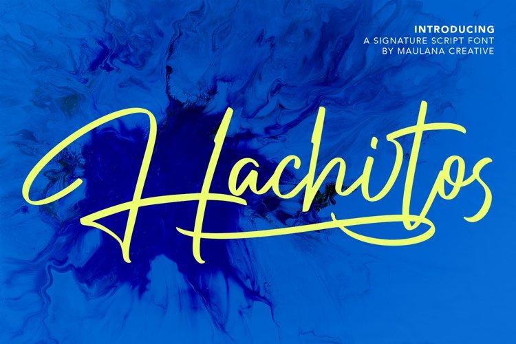 Hachitos Signature Script Font example image 1