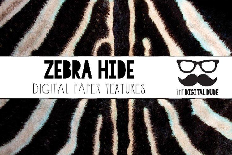 Zebra Hide - Digital Paper Set of 12 Images example image 1