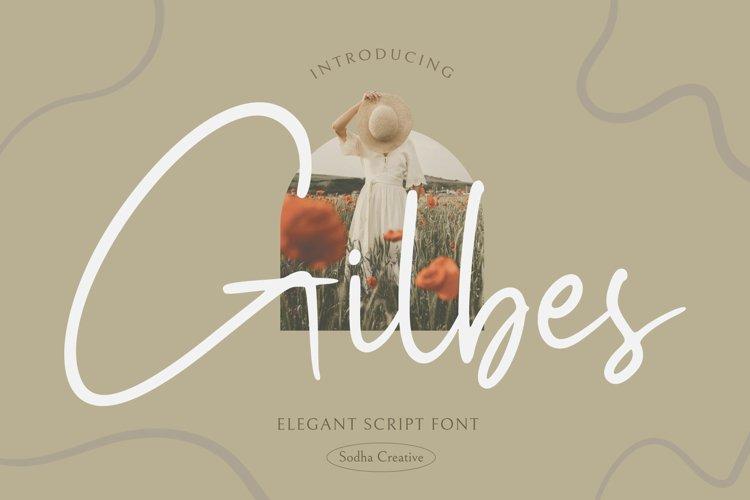 Gilbes - Elegant Script example image 1