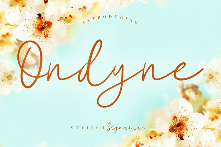 Ondyne Stylish Signature example image 1