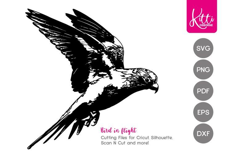Bird SVG example image 1