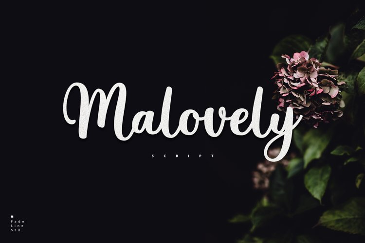 Malovely - Love Font! example image 1