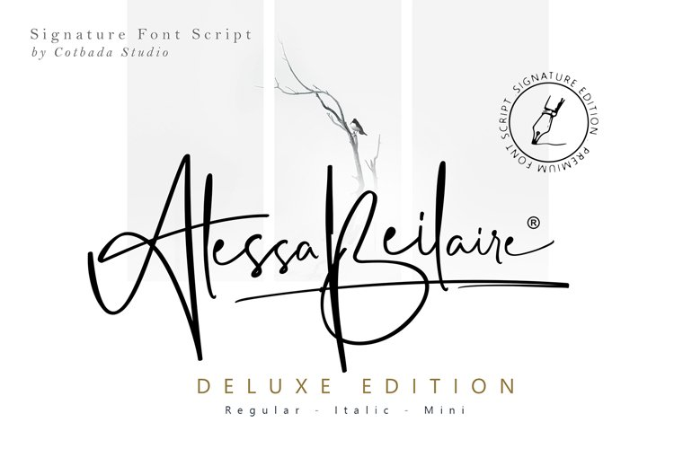 Alessa Beilaire Deluxe Edition example image 1