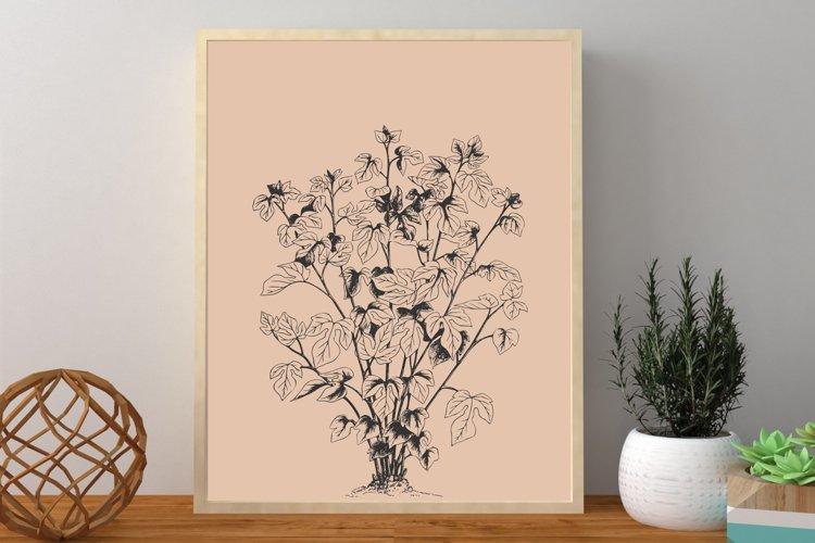 Plant Prints, Minimalist Prints, Plant Wall Art Print example image 1