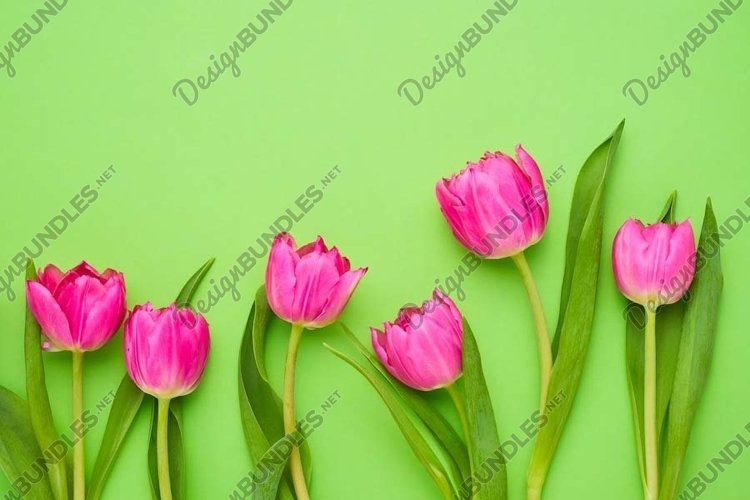 Border of bright pink tulips on green background. example image 1
