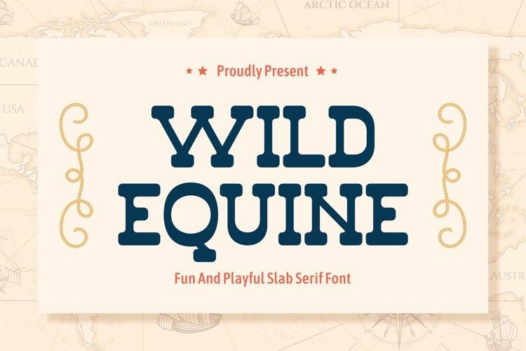 Wild Equine - Fun and Playful Slab Serif Display example image 1