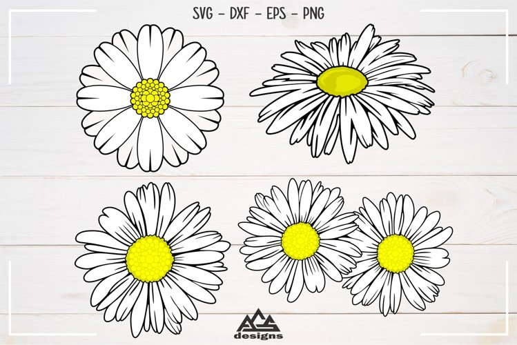 Daisy Flowers Svg, Dxf, Eps, Png, Cutting File Design