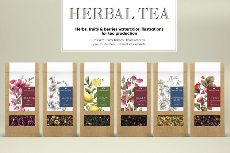 HERBAL TEA. Watercolor illustrations example image 1