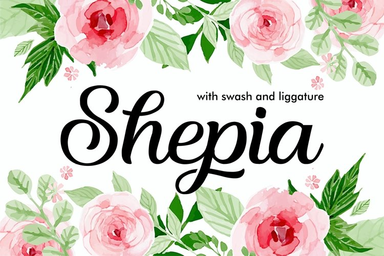 Shepia Beauty Script example image 1