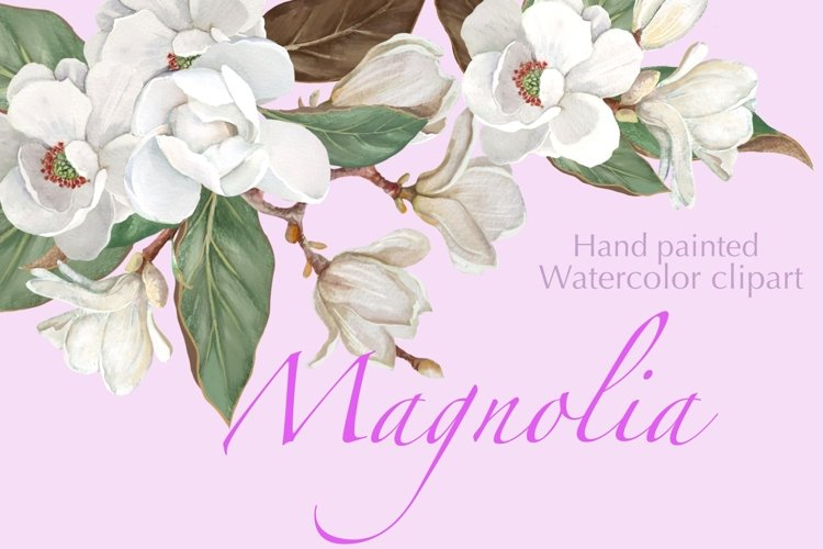 Magnolia Flower, Watercolor Floral clipart example image 1