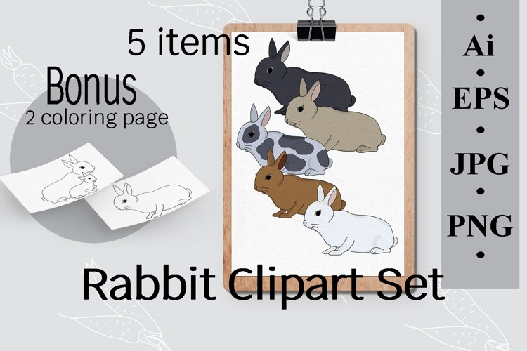 Rabbit Clipart set, 5 items and coloring pages