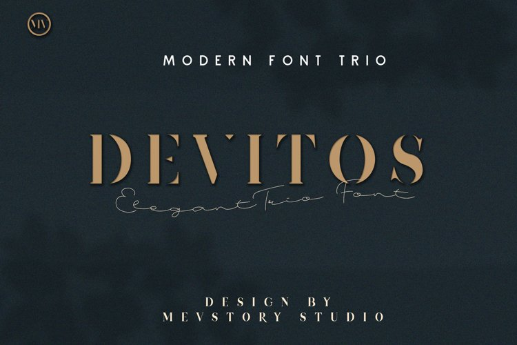 Devitos Modern & Elegant Serif Font