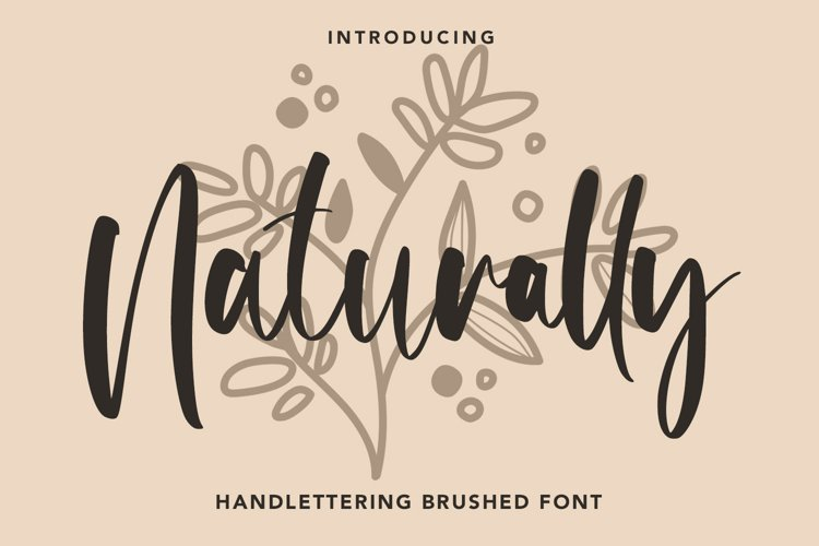 Naturally - Handlettering Brushed Font example image 1