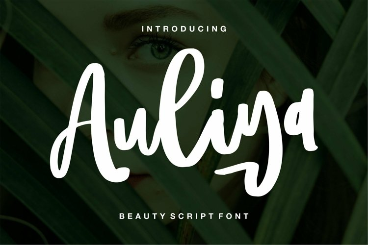 Web Font Aulia - Beauty Script Font example image 1