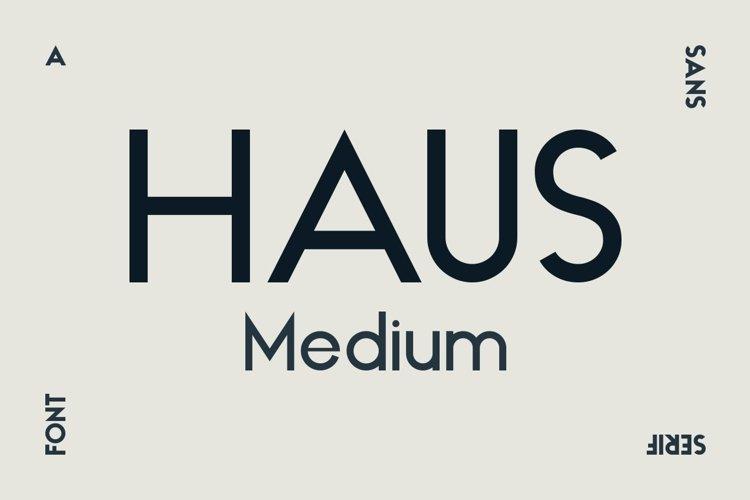 HAUS Sans Medium example image 1
