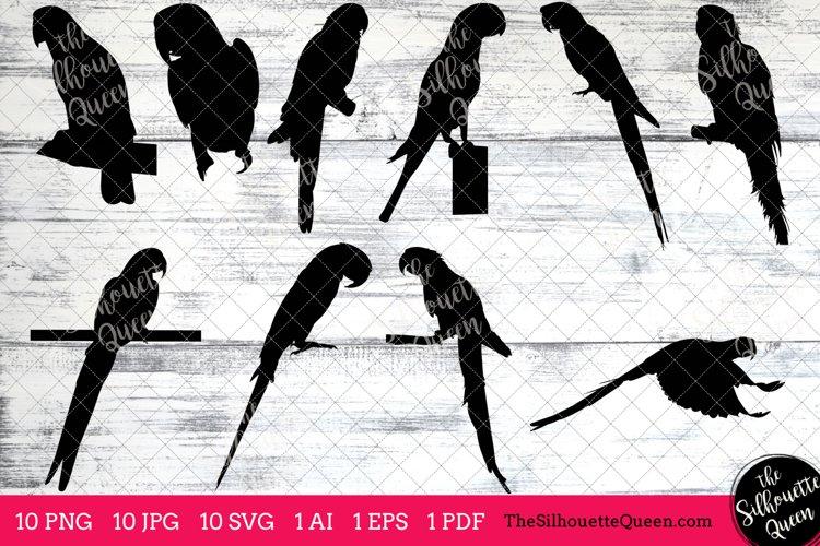 Parrot Silhouette Clipart Clip Art(AI, EPS, SVGs, JPGs, PNGs, PDF), Parrot Clip Art Clipart Vectors - Commercial   Personal Use