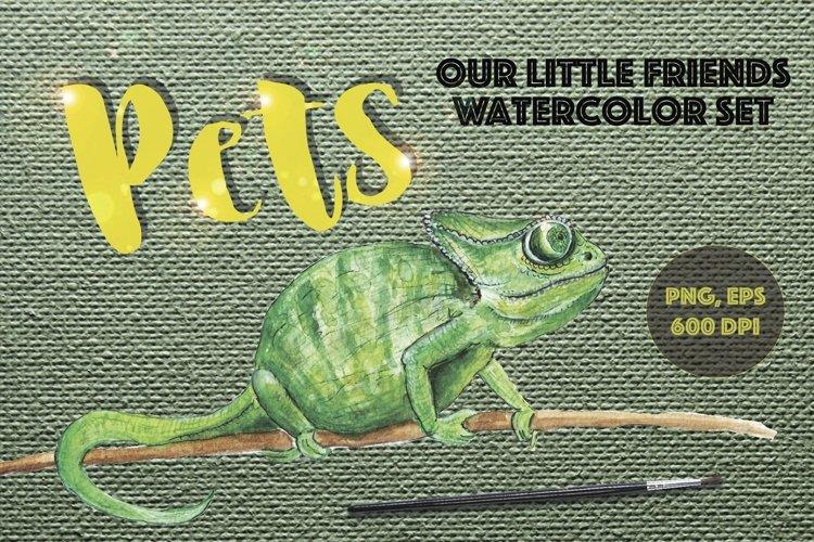 Pets. Watercolor set example image 1