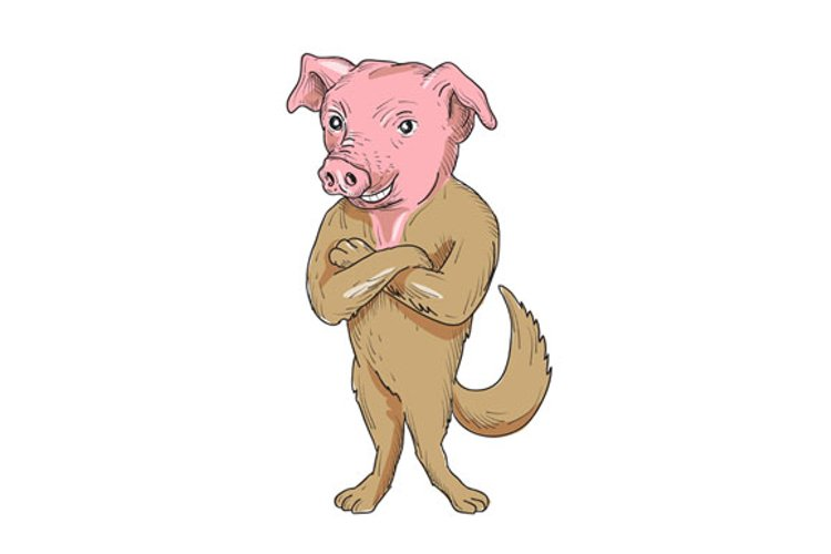 Pig Dog Standing Arms Crossed Cartoon example image 1