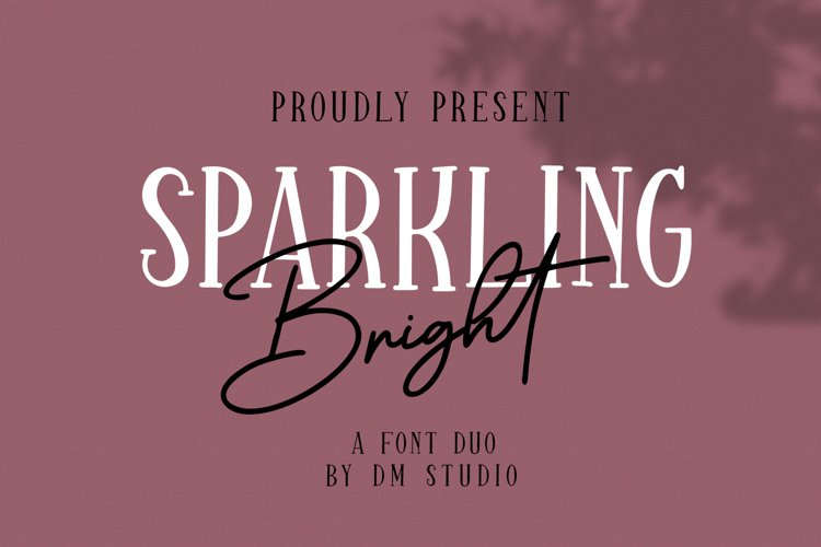 Sparkling Bright - Beauty Font Duo example image 1
