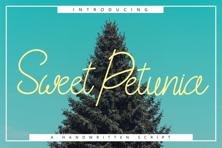 Sweet Petunia Handwritten Script example image 1
