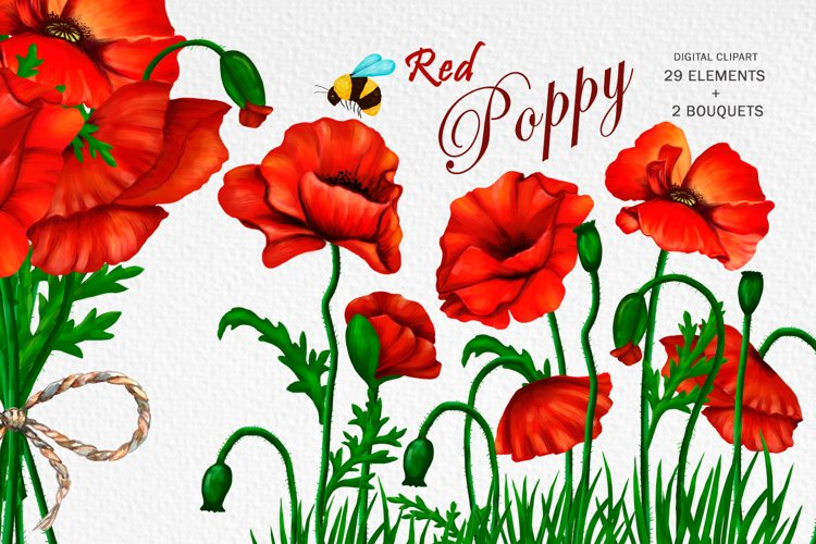 Poppy clipart red flower and bee, bouquet of poppy