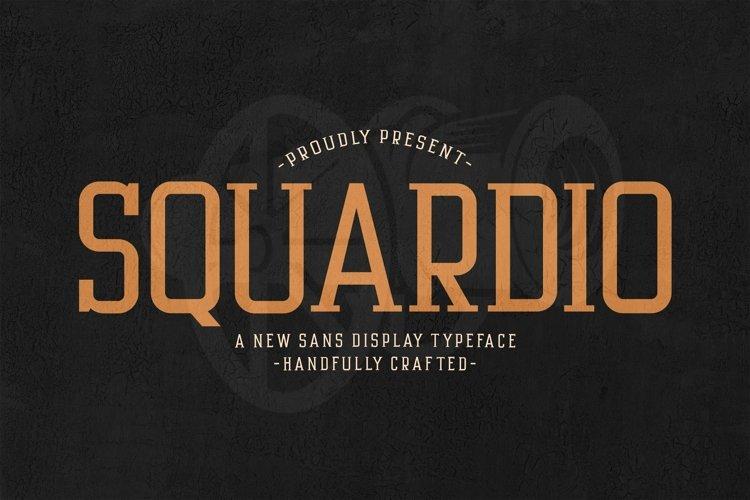 Web Font Squardio example image 1