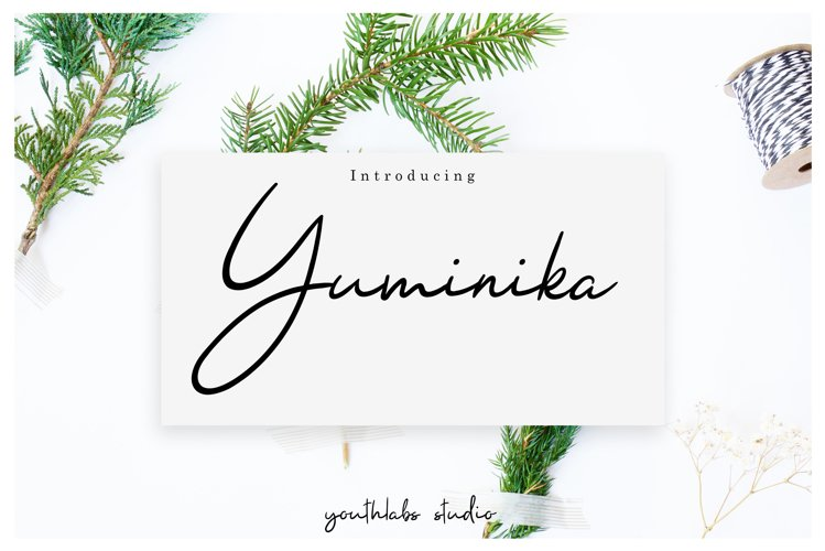 Yuminika - Handwritten Font example image 1
