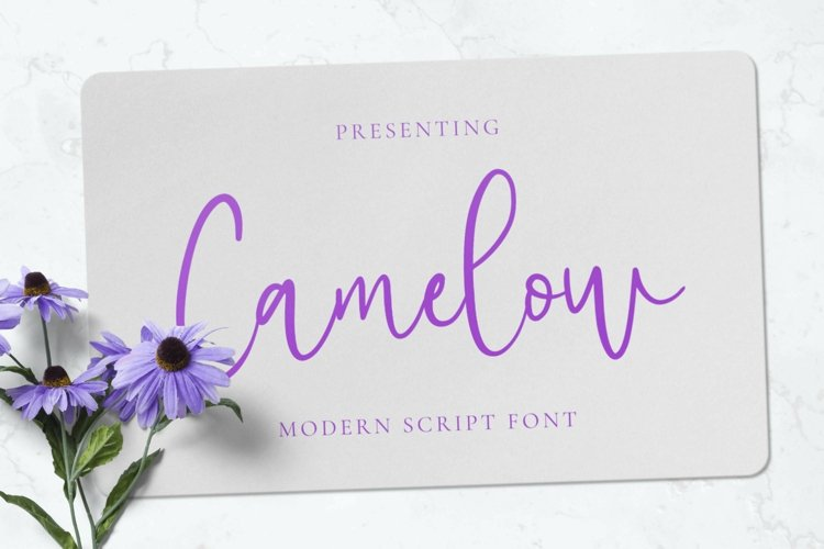 Web Font Camelow example image 1