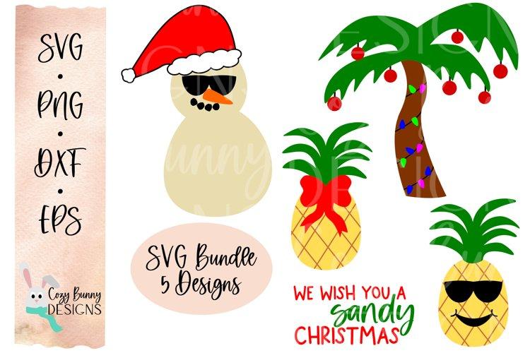 Tropical Christmas SVG - We Wish You a Sandy Christmas