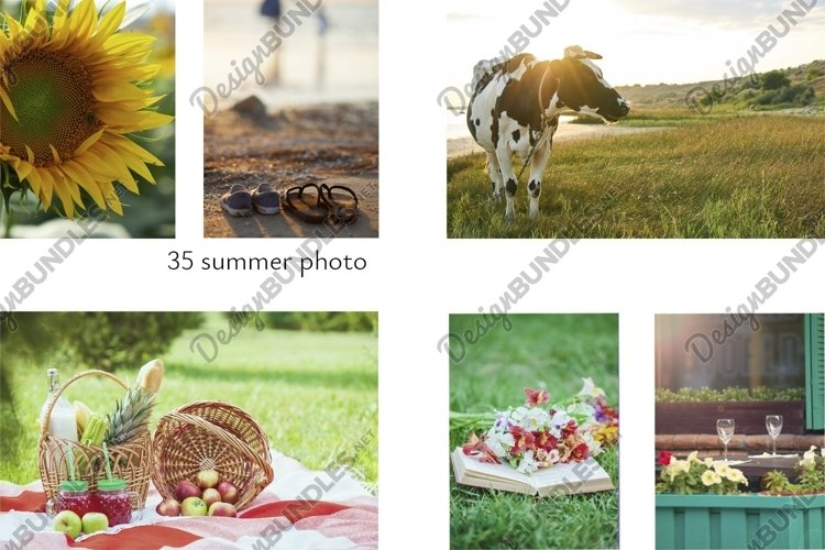 set of 35 summer photo