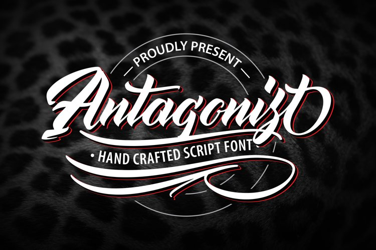 Antagonis | Handcrafted Script Font example image 1