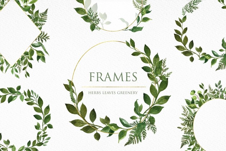 Watercolor Greenery Leaves Leaf Frame Frames Borders Clipart example image 1