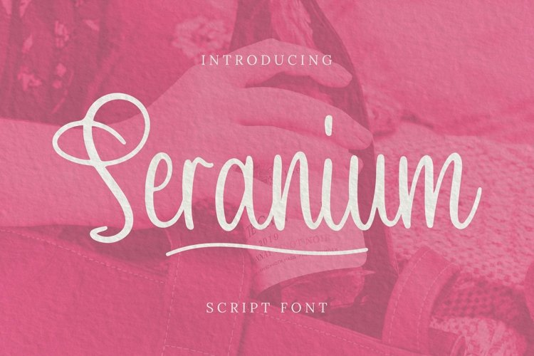 Web Font Seranium Font example image 1