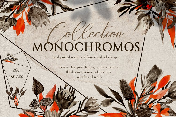 MONOCHROME Floral Collection