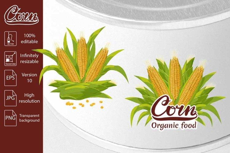 Corn cob organic food logo vector