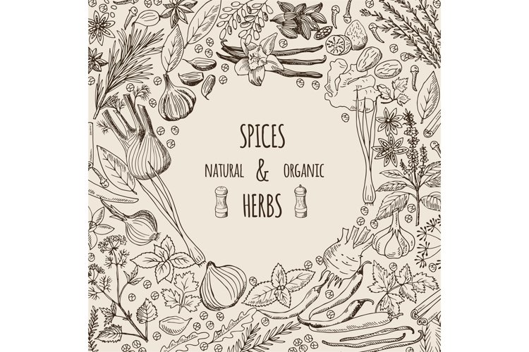 Healthy background illustrations with spices and herbs. Hand example image 1