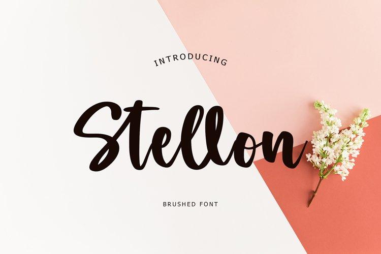 Stellon Brush Font example image 1