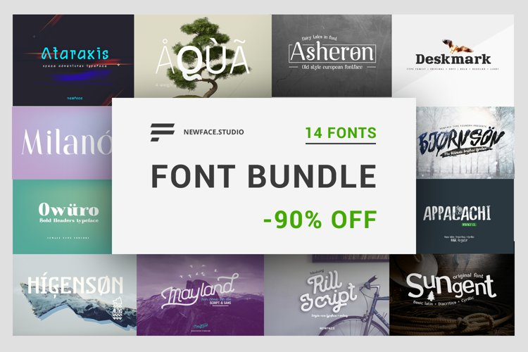 14 font bundle by Newface -90 off example image 1