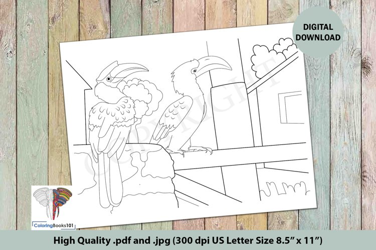 The Hornbill Sitting on the Boundary Intricate Coloring Page example image 1