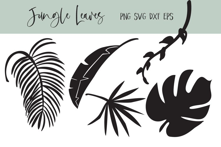 Jungle Leaves in SVG EPS PNG DXF example image 1