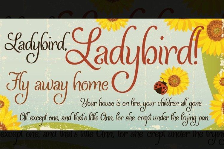 Ladybird example image 1