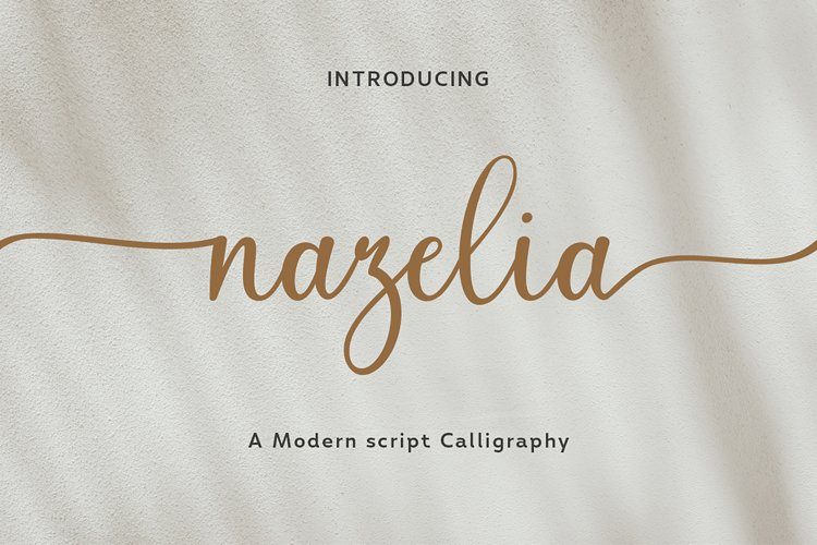 Nazelia Modern Script! WebFont example image 1