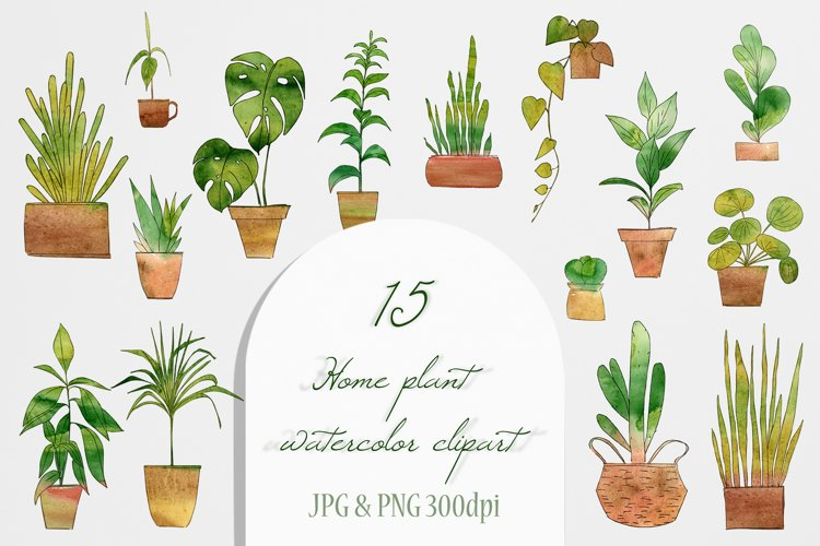Watercolor Home Plant Clipart Set example 3