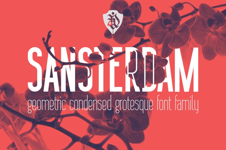 Sansterdam Bold and Thin example image 1